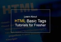 Learn About HTML Basic Tags – Tutorials for Fresher