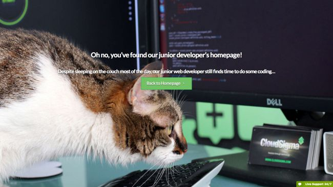 10 Examples Of Creative 404 Error Pages