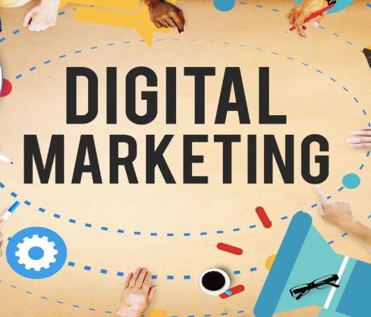 Digital Marketing Consultant in Delhi